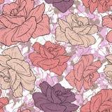 Piękny różany tło Obraz Royalty Free