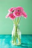 Piękny różowy gerbera kwitnie bukiet w wazie Obrazy Royalty Free