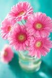 Piękny różowy gerbera kwitnie bukiet w wazie Obraz Royalty Free