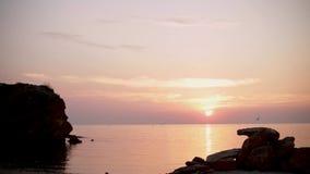 Piękny różowy zmierzchu wschód słońca na morzu, uzupełnia spokój, latający seagulls zbiory wideo