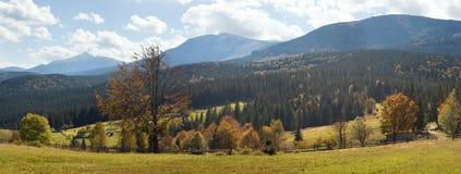 piękny ranek kraju Zdjęcia Stock