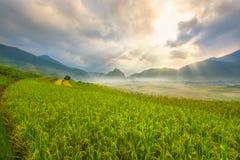 Piękny Ray światło natura w ryżu tarasie Wietnam krajobraz i góra Zdjęcia Stock