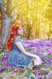Piękny rudzielec dziewczyny lying on the beach w łące Zdjęcia Royalty Free