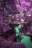 Piękny rzeczny spływanie przez alternacyjnego surrealistycznego barwionego lasu Obrazy Stock