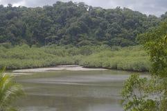 Piękny rzeka krajobraz w Costa Rica fotografia stock