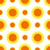 Piękny słonecznik odizolowywający na białym tle Zdjęcie Royalty Free