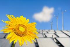 Piękny słonecznikowy panel słoneczny i władza fotografia royalty free