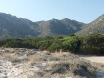 Piękny Sardyński krajobraz na słonecznym dniu fotografia royalty free