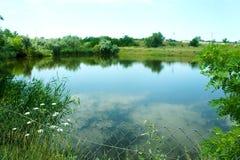 Piękny sceniczny jezioro w ranku Ukraina, spokojny pokojowy miejsce, rezerwat przyrody zdjęcia royalty free