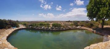 Piękny Sceniczny widok basen Z drzewem i wsią zdjęcie stock