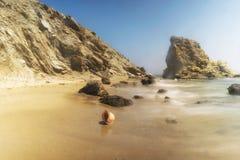 Piękny seashell przy Lolantonis skalistą plażą w Paros wyspie Zdjęcie Royalty Free