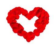Piękny serce czerwieni róży płatki odizolowywający na bielu ilustracji