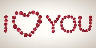 Piękny serce realistyczni czerwieni róży płatki na bielu Obraz Royalty Free