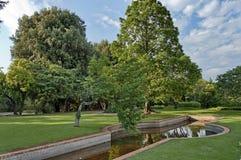 Piękny skład w ogródzie botanicznym obraz royalty free
