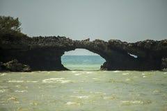 Piękny skała widok w Kwale wyspie zanzibar Tanzania Zdjęcie Royalty Free