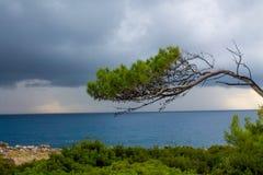 Piękny skalisty moczy wybrzeże i duże fale fotografia stock