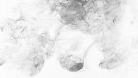 Piękny skręt czerń dym na białym tle zbiory