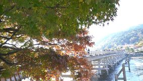 Piękny spadku kolor i TogetuKyo most zbiory wideo