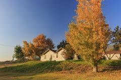 Piękny spadku kolor nad Dębowym roztoka terenem zdjęcia royalty free