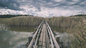 Piękny spokojny krajobraz mglisty bagna jezioro - rocznik retro zdjęcie royalty free