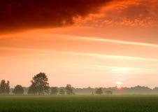 piękny spokojny wschód słońca zdjęcia royalty free