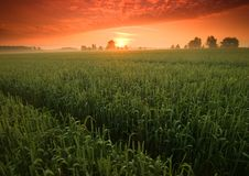 piękny spokojny wschód słońca zdjęcia stock