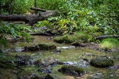 piękny strumień Zdjęcia Royalty Free