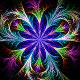 Piękny stubarwny fractal kwiat Kolekcja - mroźny patte royalty ilustracja