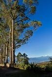 Piękny suszy krajobraz andyjscy średniogórza wewnątrz Fotografia Royalty Free