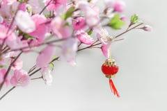 Piękny sztuczny czereśniowego okwitnięcia drzewo i chińczyk czerwień lampion zdjęcia stock