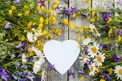 Piękny tło kwiatu pole i serca dla walentynki ` s dnia stokrotki i dzwony kosmos kopii Zdjęcia Stock