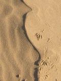 Piękny tło piasek Zdjęcie Royalty Free