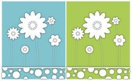 Tło. Biali kwiaty. Fotografia Stock