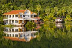 Piękny tropikalny miejsce z zielonymi kokosowymi drzewkami palmowymi i jezioro wodą w Tajlandia zdjęcia royalty free