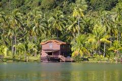 Piękny tropikalny miejsce z zielonymi kokosowymi drzewkami palmowymi i jezioro wodą w Tajlandia zdjęcie stock