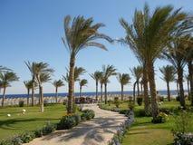 Piękny Tropikalny Plażowy widok, Meksyk obrazy stock