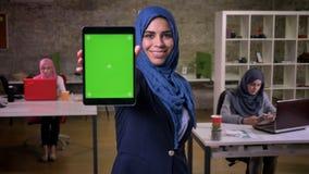 Piękny uśmiech arabska kobieta która pokazuje zielonego ekran na pastylce i stoi w ceglanym biurze wśród ona arabska