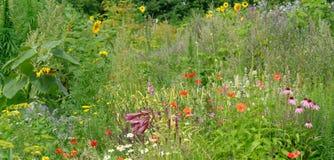 Piękny upaćkany ogród zdjęcie royalty free
