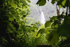 Piękny Valle maggia natury krajobraz Switzerland zdjęcia royalty free