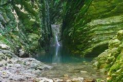 Piękny wąwóz przerastający z mech i bluszczem z spokojną rzeką małą siklawą i obraz royalty free