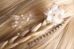 piękny włosy Obraz Royalty Free