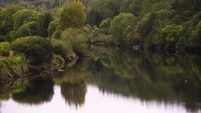 Piękny wciąż strzelał rzeki odbicie zbiory wideo