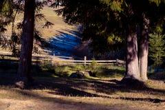 Piękny wczesny wiosna krajobraz w górach honeymoon zdjęcie stock