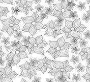 Piękny wektorowy bezszwowy tło z leluja kwiatami Obraz Stock