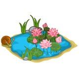Piękny wektorowy jezioro z ślimaczkiem, płochami i lelujami, ilustracja wektor