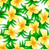Piękny wektorowy kwiatu wzór z liściem na białym tle zdjęcie royalty free