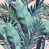Piękny wektorowy tropikalny palma liści wzór w eleganckim stylu ilustracja wektor