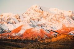 Piękny widok śnieżni halni szczyty Zdjęcie Royalty Free