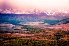 Piękny widok śnieżni halni szczyty Obrazy Royalty Free