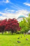 Piękny widok świątynia St Sava w Belgrade, Serbia Fotografia Royalty Free